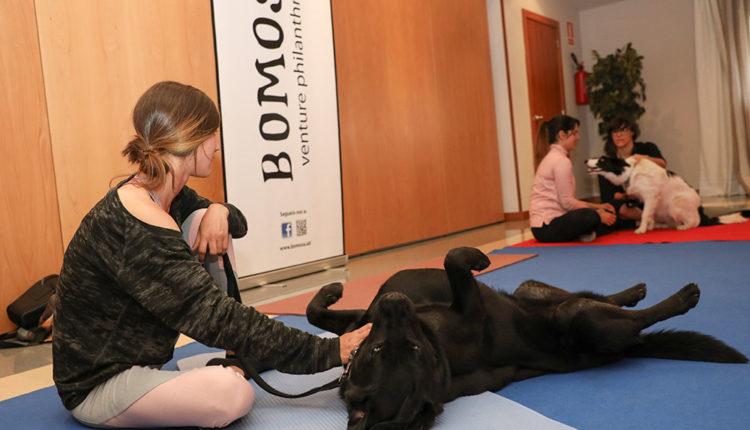 Noia amb gos a les sessions de Doga