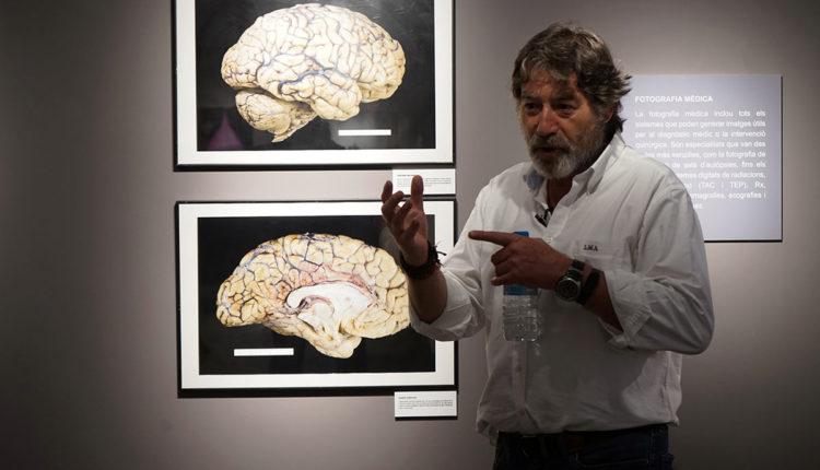 Exposició fotografia científica Museu del Tabac