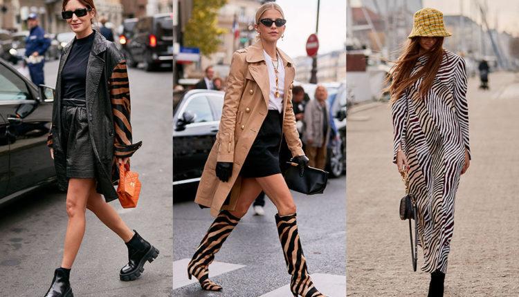 Moda estampats de zebra